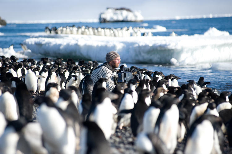 "<p><strong>DANCING WITH PENGUINS.</strong>  Cameraman Mark Smith (shown here) and director Jeff Wilson spent four months in Cape Crozier by the Ross Sea. They braved impending isolation madness, winds up to 150 mph, temperatures as low as -13º F, sleep deprivation from working through the 24-hour daylight, and attacks by skuas. All this to film a colony of very noisy, smelly Adélie penguins struggling to raise their chicks during the brief Antarctic summer. For the film crew, it meant daily three-mile round trips lugging heavy camera gear between their camp and the colony. ""At one point, we airlifted the guys and brought them back to McMurdo base for a farewell party,"" says Berlowitz. ""They were barely able to speak to humans. They just stood there drinking beer. And then we returned them to finishing filming.""</p>"