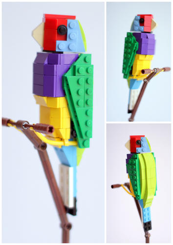 <p>Gordon the Gouldian Finch is a colorful character.</p>