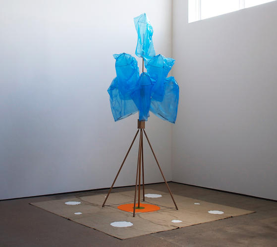 <p>Wurtz, who grew up in California, elevates mundane objects by treating them as compositional elements.</p>
