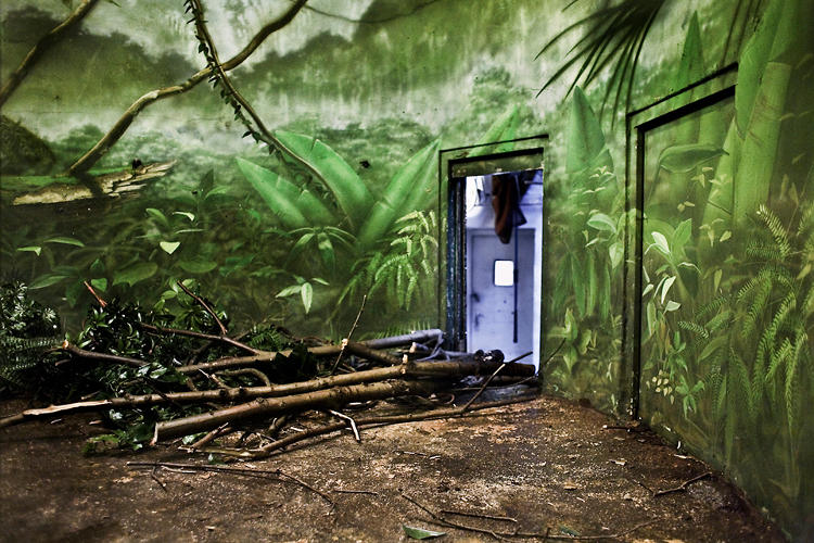 <p>Elements like a door in the middle of a tropical scene make the enclosure all the more surreal.</p>
