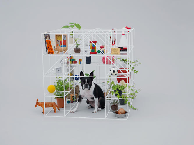 <p>Sou Fujimoto's piece for the Boston Terrier is made of Japanese cypress, and it serves as a shelter for the dog, a shared piece of furniture for dogs and humans and an architectural piece to someone's garden.</p>