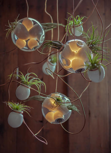 <p>Each individual orb has between four and six cavities, three of which are used for LED lighting connected (and electrified) via copper tubing. The rest of the openings are cocoons for miniature gardens.</p>