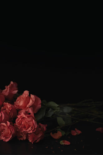 <p>And for Al Green: 24 red roses, pre-stemmed and dethorned.</p>