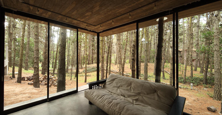 <p>By the time you reach the glass-enclosed patio at the foot of the house, the glass has nearly liquidated the concrete.</p>