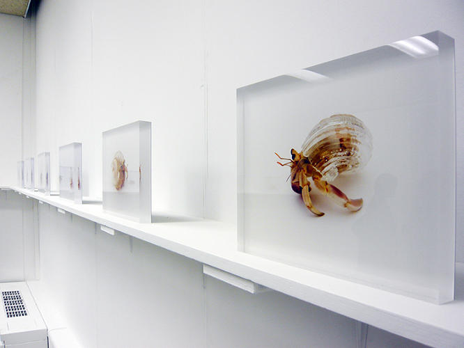 <p>Apart from function, Inomata's shells also carry an encoded artistic message.</p>