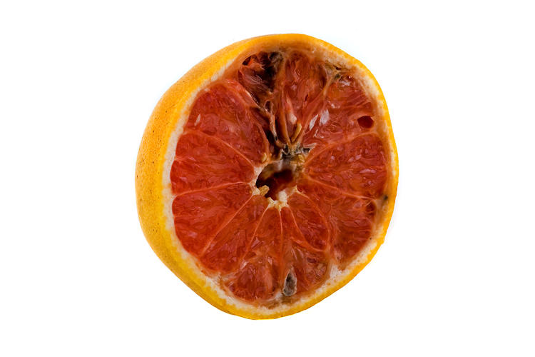 What is the orange fruit that looks like a tomato 10