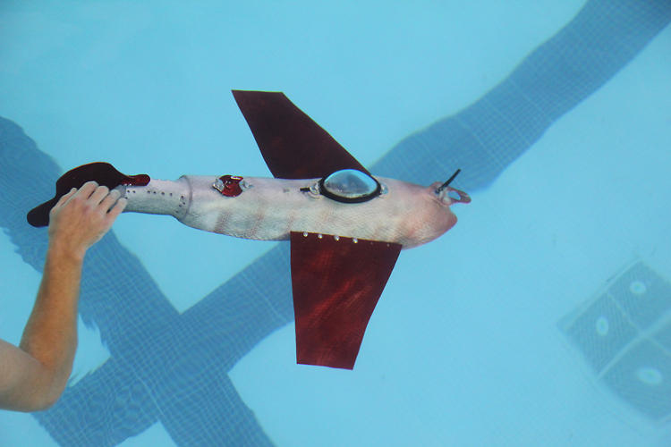 <p>The GRACE Robot is designed to swim a long way using little power, mimicking the swimming style of a fish.</p>
