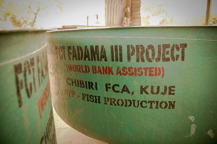 <p>These fish ponds are one of thousands of agriculture projects supported by the World Bank in Nigeria, working in collaboration with the federal government. The goal of this particular program is to reduce rural poverty and contribute to food security.</p>