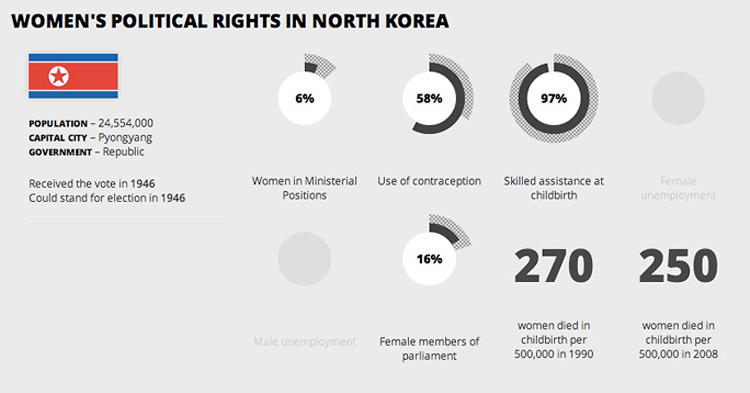 <p>North Korea is the only country (of the ones the project could find data for) where a woman has never been elected to office.</p>