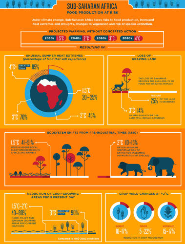 <p>This infographic from the World Bank shows how climate change will affect the developing world. In sub-Saharan Africa, the report predicts a 25% loss of grazing land even based on today greenhouse gas emissions (a temperature increase of 0.8%).</p>