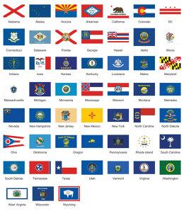 Can You Guess All 50 of Fabian Gonzalez's Superhero Flags?
