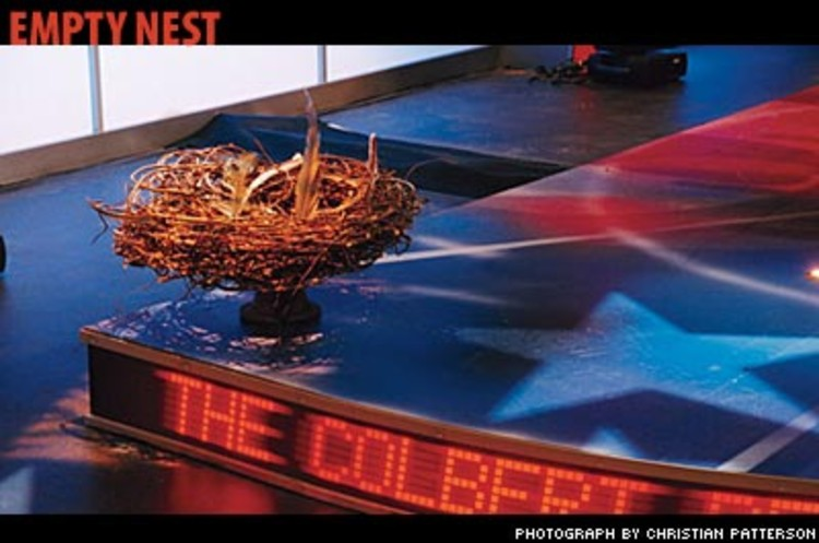 <p><em>Colbert</em>'s signature &quot;eagle's nest&quot; was constructed from a wreath, then embellished with feathers, twigs, and a few random bones. Sadly, the San Francisco Zoo's baby bald eagle, affectionately known as &quot;Stephen Jr.&quot; on the show, has yet to pay a visit.</p>