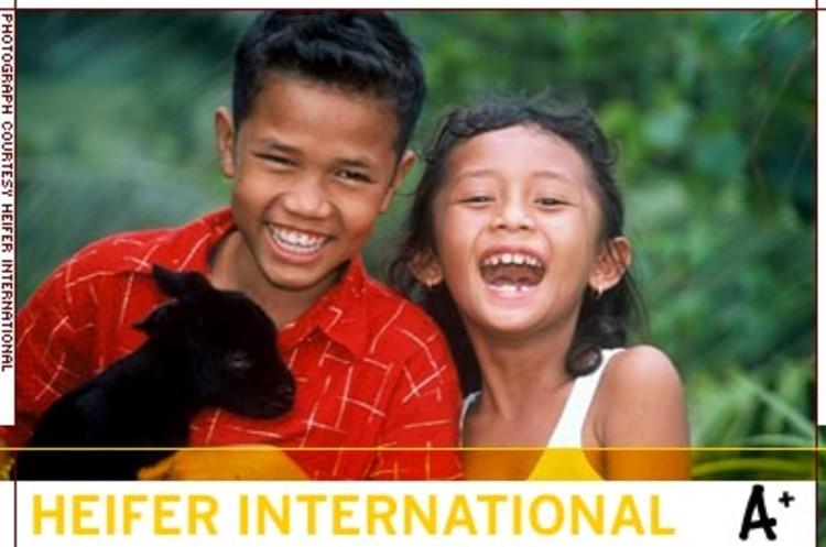 <p>Heifer supplies livestock and training to help farmers in poor countries. The organization has aided more than 7.5 million families since 1944. In fiscal 2004, it placed 384,000 animals; 203,000 livestock offspring were passed on to other families.</p>