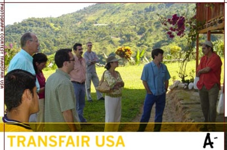 <p>In the past six years, TransFair has certified 74.2 million pounds of Fair Trade coffee, providing coffee farmers in Latin America, Africa, and Asia with over $60 million more than they would have earned selling their harvests locally.</p>