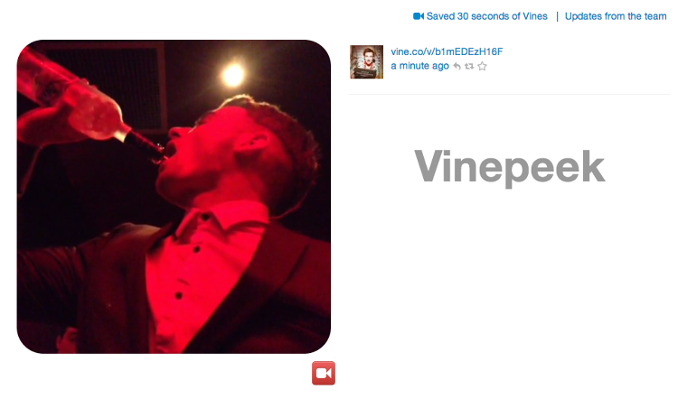 <p>Watch an endless stream of Vines as they happen in real-time and record the ones you like--Vinepeek will store till the end of your session.</p>