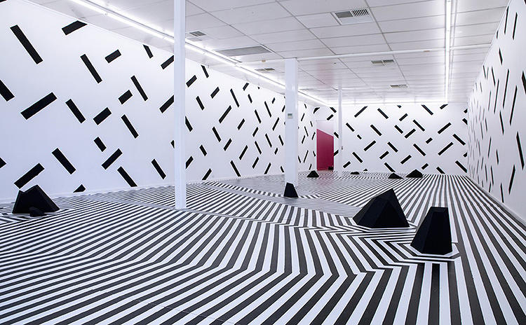 <p>The project was installed at Adelaide's Fontanelle Gallery &amp; Studios, where it took up an entire wing.</p>
