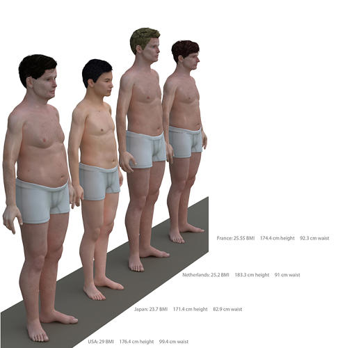 <p>Lamm's latest project compares BMI (and height and waist measurements) of men from the U.S, Japan, the Netherlands, and France, all based on government data from each of the countries.</p>