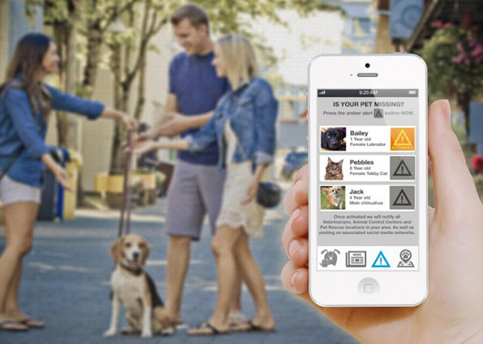 <p>You can download the PiP app, take a picture of your pet, and enter some basic details.</p>