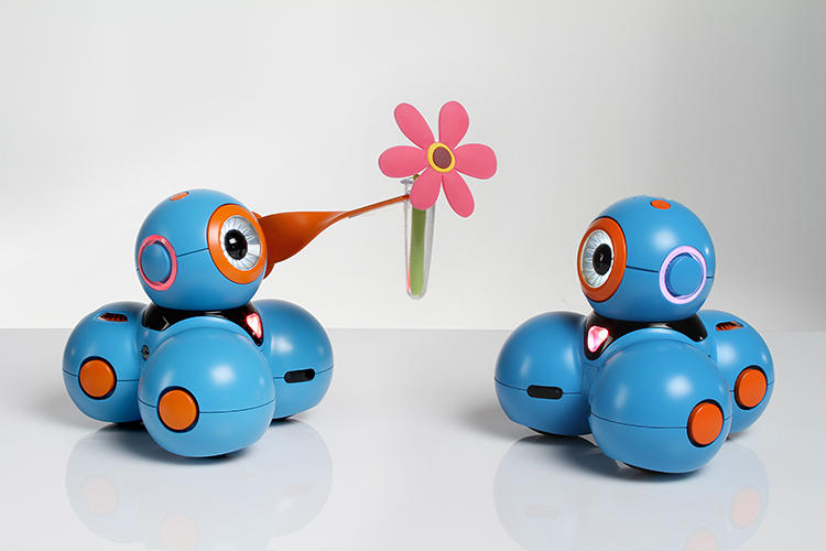 <p>Bo and Yana are two expressive robots that even a 5-year-old can learn to program.</p>