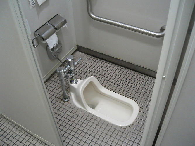<p>The traditional Japanese squat toilet looks like a urinal on the floor. Unlike squat toilets in less developed areas, which consist of a hole in the floor, this toilet has fixtures that are similar to a standard Western toilet.</p>
