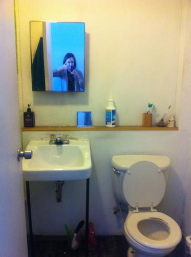<p>Co.Exist staffer Sydney Brownstone shows off her toilet and adds a stealth selfie.</p>