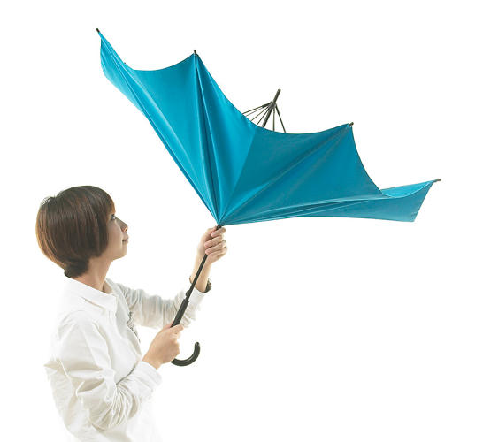 <p>The umbrella is a remarkably enduring piece of design, yet it still has a long way to go.</p>