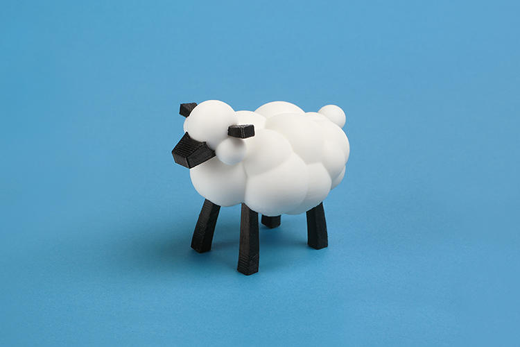 <p>The sheep that LEO The Marker Prince asks Carla to draw.</p>