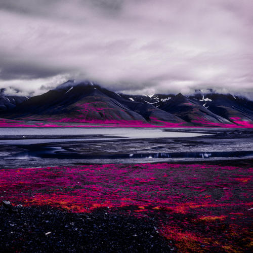 <p>The photographer plans to return to the Arctic next summer, before his last stash of Aerochrome, which rapidly degrades, becomes unusable.</p>