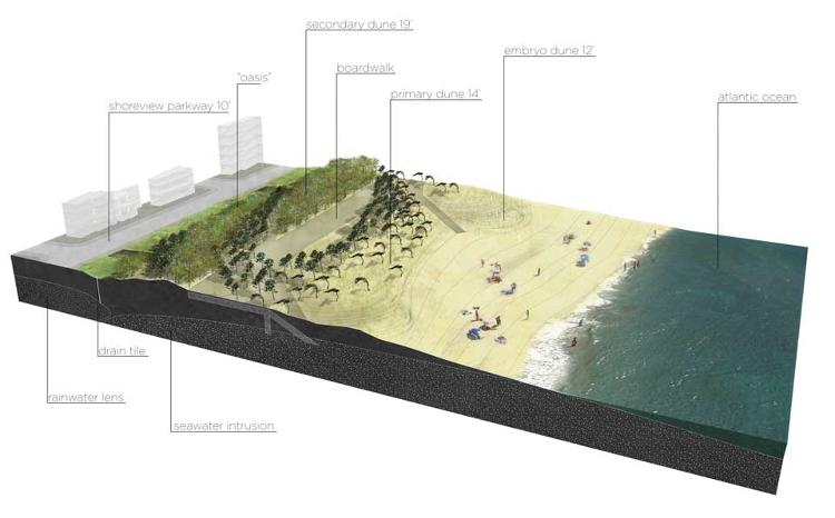 <p>This graphic depicts a plan to convert part of the shore front parkway to a forested double-dune system, which would buffer the effects of storm surges and rising seas.</p>