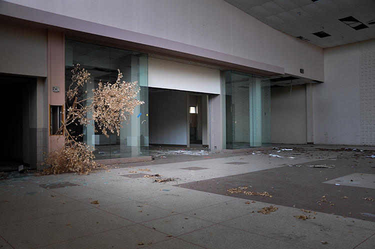 <p>Over the next couple of decades, as many as half of the malls in the U.S. may be abandoned.</p>