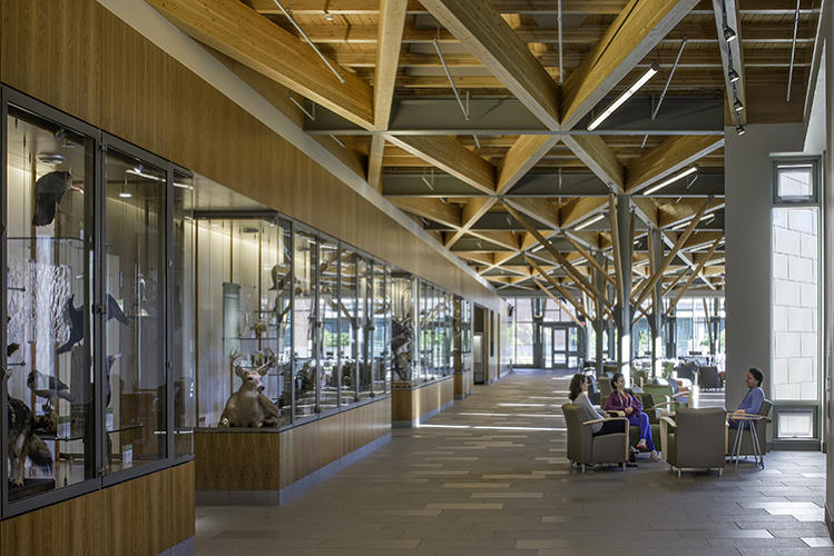 <p>At the SUNY College of Environmental Science and Forestry, a new LEED-Platinum campus center produces so much extra power that it can actually supply 60% of the entire campus's heat and 20% of its power. <a href=&quot;http://architerra-inc.com/web/&quot; target=&quot;_blank&quot;>Architerra</a></p>