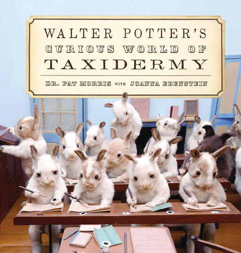 <p>The morbidly adorable book is available for purchase <a href=&quot;http://www.amazon.com/Walter-Potters-Curious-World-Taxidermy/dp/1472109503&quot; target=&quot;_blank&quot;>here</a>.</p>