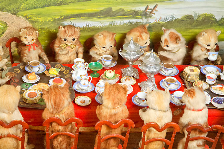 <p>At age 15, Walter Potter, born 1835, began creating anthropomorphic tableaux of guinea pigs playing croquet, squirrels smoking cigars, and kittens having tea parties.</p>