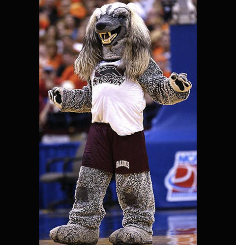 <p>The saluki is a noble, ancient breed of dog. The Southern Illinois mascot is something else.</p>