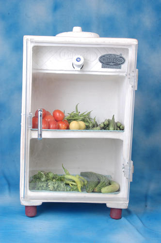 <p>The Mitticool fridge is hardly the answer, but it does offer a stop-gap solution of sorts.</p>
