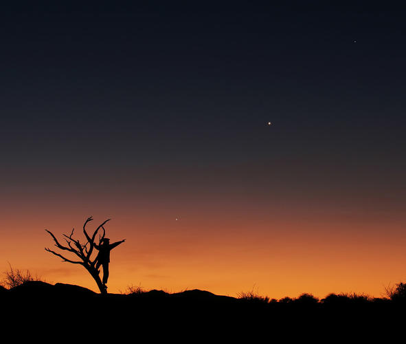 <p>Jupiter, Venus and Mercury align against the staggering colors of the sunset and flora of the African savannah in June 2013. The bare tree and the human figure both point to one direction: Jupiter.</p>