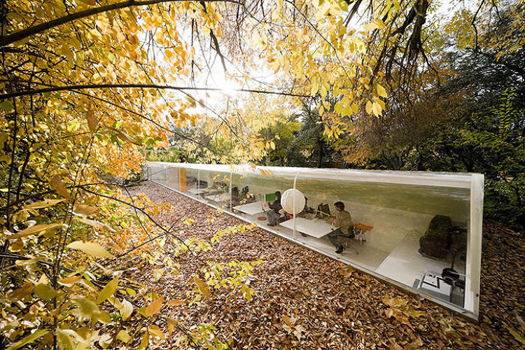 <p>Looking almost like a glass-fronted long subway car, <a href=&quot;http://inhabitat.com/incredible-glass-office-gives-employees-a-bugs-eye-view-of-the-forest-floor/&quot; target=&quot;_blank&quot;>this office</a> was built by and for the Spanish architecture firm Selgas Cano.</p>
