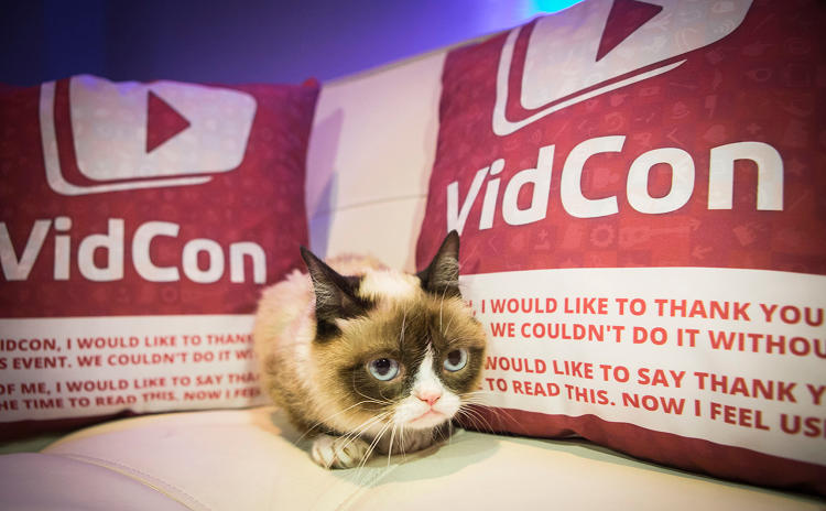 <p>Grumpy Cat had pulled in more than six figures for her owners by this time last year. And that was before she had launched a line of coffee drinks, landed the endorsement deal with Friskies, or starred in a Cheerios commercial. The figure is surely much higher now.</p>