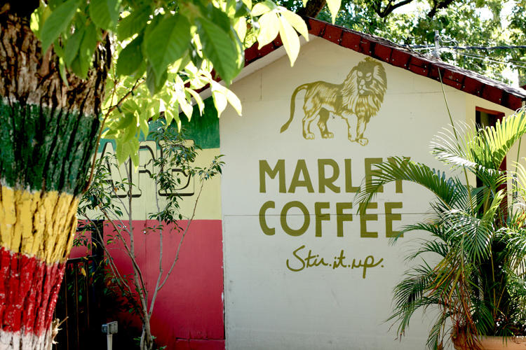 <p>Marley Coffee is still a relatively small company, churning out $6 million in revenue in 2013.</p>