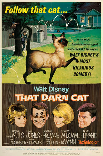 <p>During the '60s, Siamese cats ruled the screen, oftentimes as an avatar for cunning smarts. From <em>That Darn Cat</em> (1965).</p>