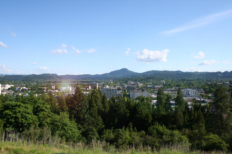 <p>Known as the Silicon Forest, Eugene is home to the natural beauty and culture of Oregon as well as a young and fast growing technology industry.</p>