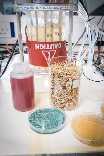 <p>Now researchers are working an alternative: A fake palm oil made from yeast and food waste.</p>