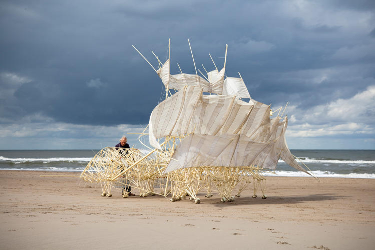 <p>Some of the newer Strandbeests have wing-like sails and fans that pump air into plastic bottles, where it's stored for later.</p>