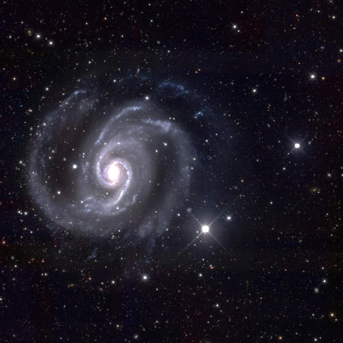 <p>The scientists chose to display images of the closest galaxies in the art show because they look similar to how people commonly imagine galaxies.</p>