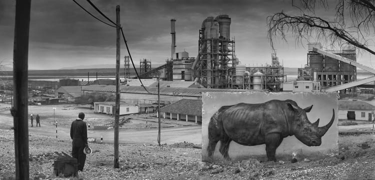 <p><em>Factory with Rhino</em>, 2014</p>