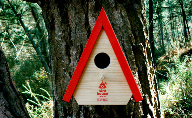 <p>This new birdhouse comes with solar panels and a 3G connection.</p>