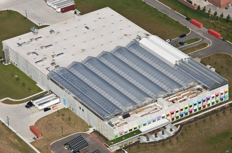 <p>Gotham Greens plans to produce 1 million pounds of produce per year in its greenhouse.</p>