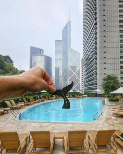 <p>...the pool at the Island Shangri-La in Singapore...</p>