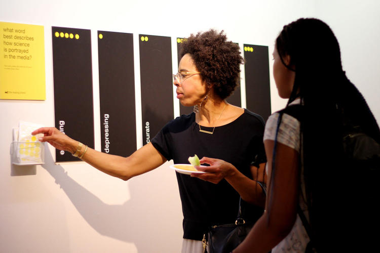 <p>Nt2: Visitors voting with stickers</p>