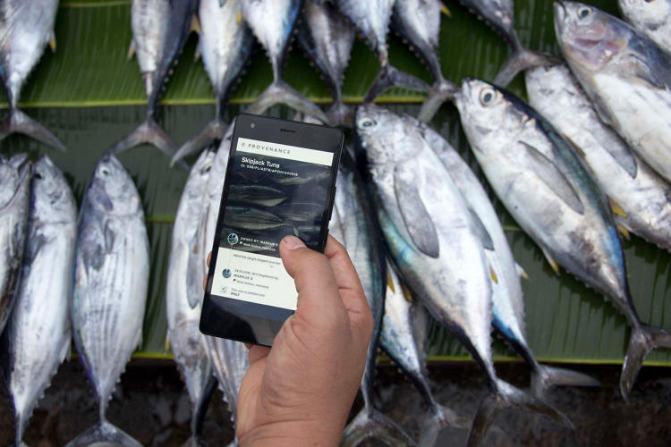 <p>Today when you buy fish, it's likely that it is unsustainable or caught by slaves in Southeast Asia.</p>